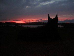 Tasha Enjoying The Sun Set At The Campground.
