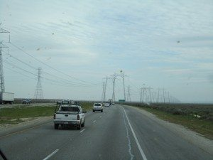 Lots Of Power Lines And Lots Of Bug Splatter!