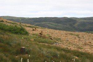 The Tablelands