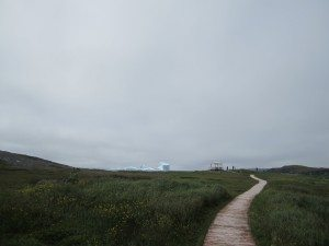 A Path Leading To The Icebergs