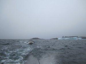 Rough Seas Coming In
