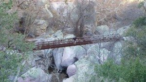 One Of The Bridges Spanning Across The Canyon
