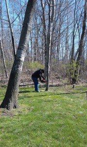 David Cutting Down Some Trees
