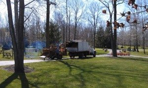 The Truck With The Wood Chipper Taking Care Of The Large Trunks