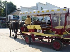 A Typical Taxi On Mackinac Island