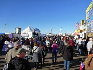 Lots Of People At The Balloon Fiesta
